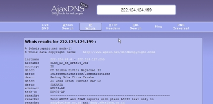 AjaxDNS Screenshot